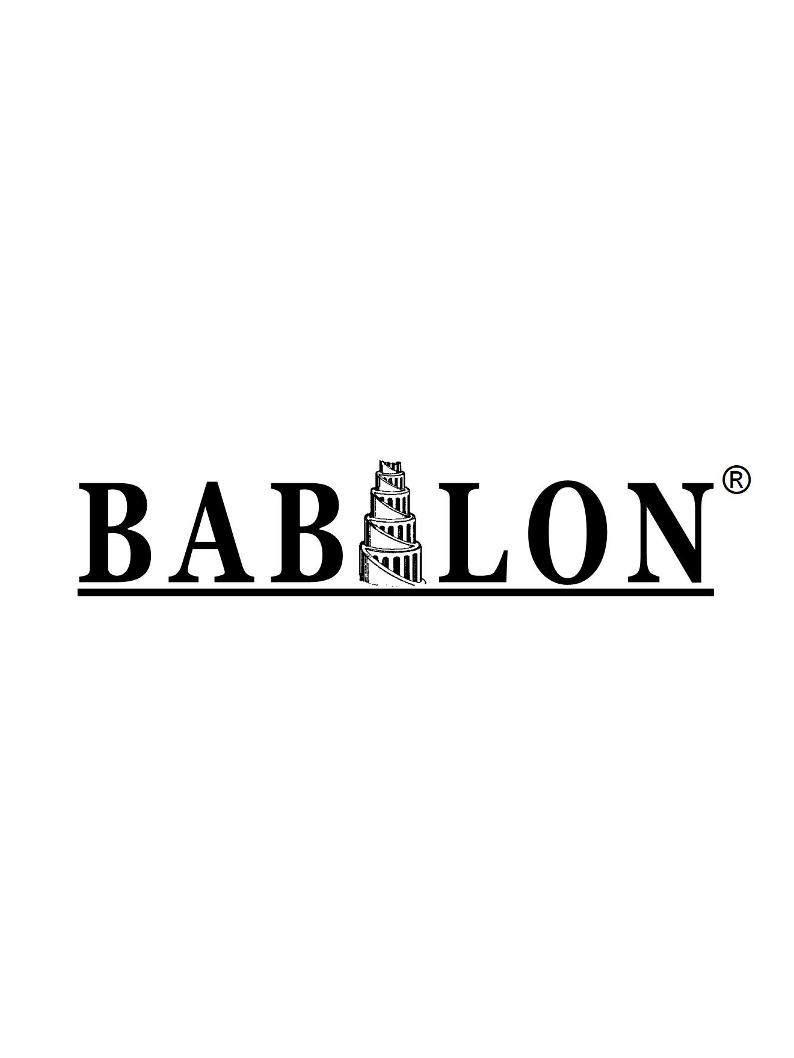 Logo SARL BABILON aménagement intérieurs des combles Dordogne 24
