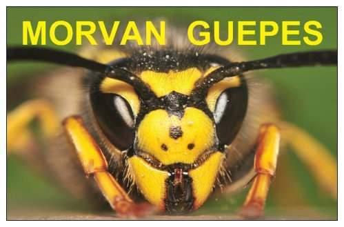 Logo Morvan Guêpes & Ramonage installation de chauffage au bois Saône et Loire 71